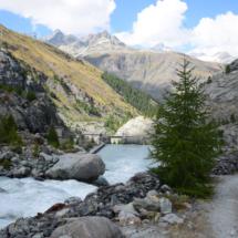 Cesta podél řeky