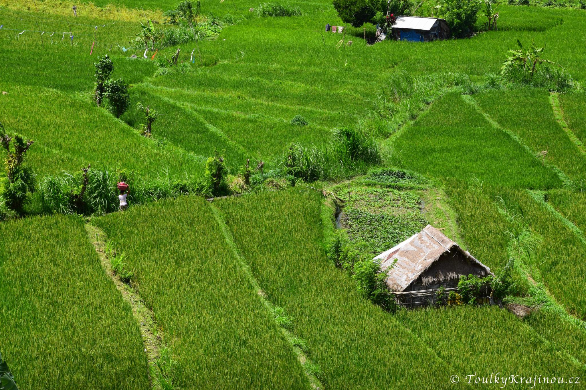 Toulky po východním Bali