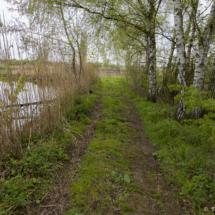 Cesta mezi rybníky