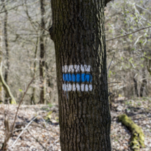 Modrá turistická značka