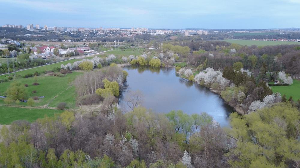 Milíčovský rybník z ptačí perspektivy