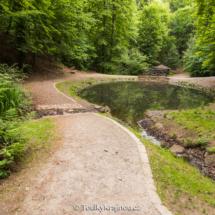 Cesta u rybníčku v lesoparku Cibulka.