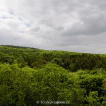 Pohled z věže na lesopark.
