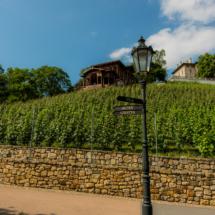 Dřevěný altán nad vinicí